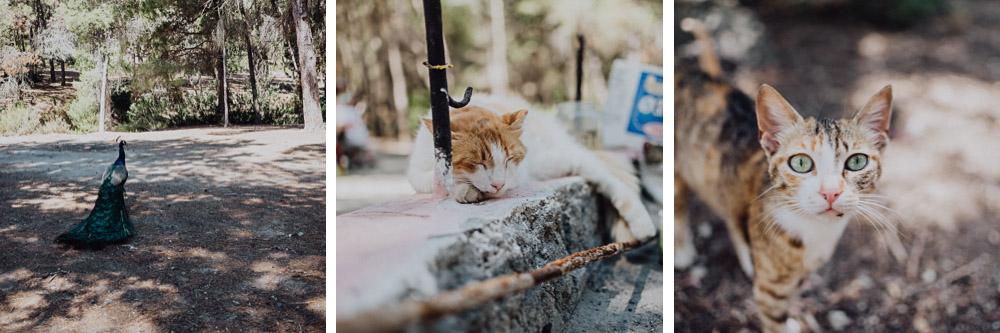 kos-greece-travel-photography